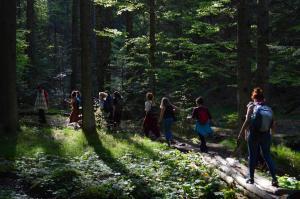 Walking around the mountain - Pohorje, Slovenia